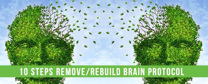 Alzheimer's novel Anti-Biofilm Protocol
