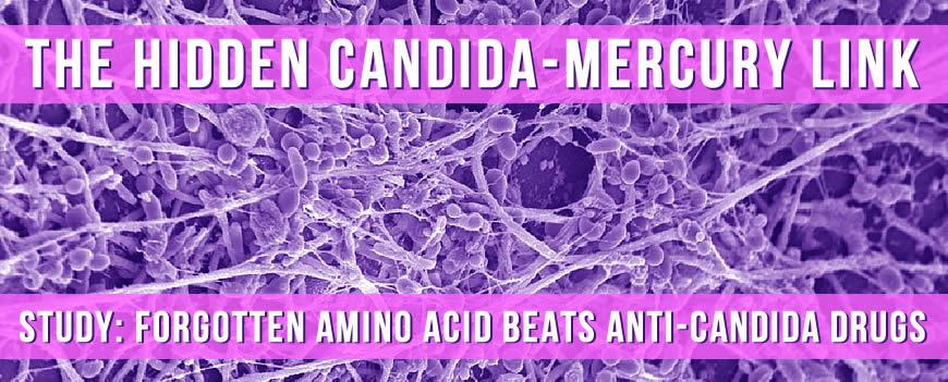 Candida_Mercury.jpg